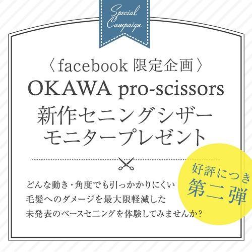 OKAWA_vol2_ad - コピー.jpg